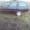ФОРД ЭСКОРТ 1.6 ДИЗЕЛЬ 96 Г.В. ЦЕЛИКОМ ИЛИ ПО ЗАПЧАСТЯМ #1317342