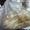 Куплю фторкаучук скф,  фторопласт трубы,  ленту,  порошок,  отходы и др. неликвиды