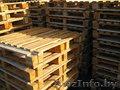 Продам поддоны деревянные бу (Мозырь)