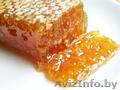 Продам: пчелопакеты,  пчелосемьи, мёд натуральный (разнотравье,  гречка) - 3 тонны,