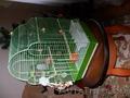 Клетка для попугая железная зелёная