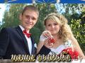 Свадебный тамада+музыка+фото+видео