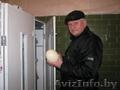 Продаю инкубаторы на 60 и 72 страусиных яйца